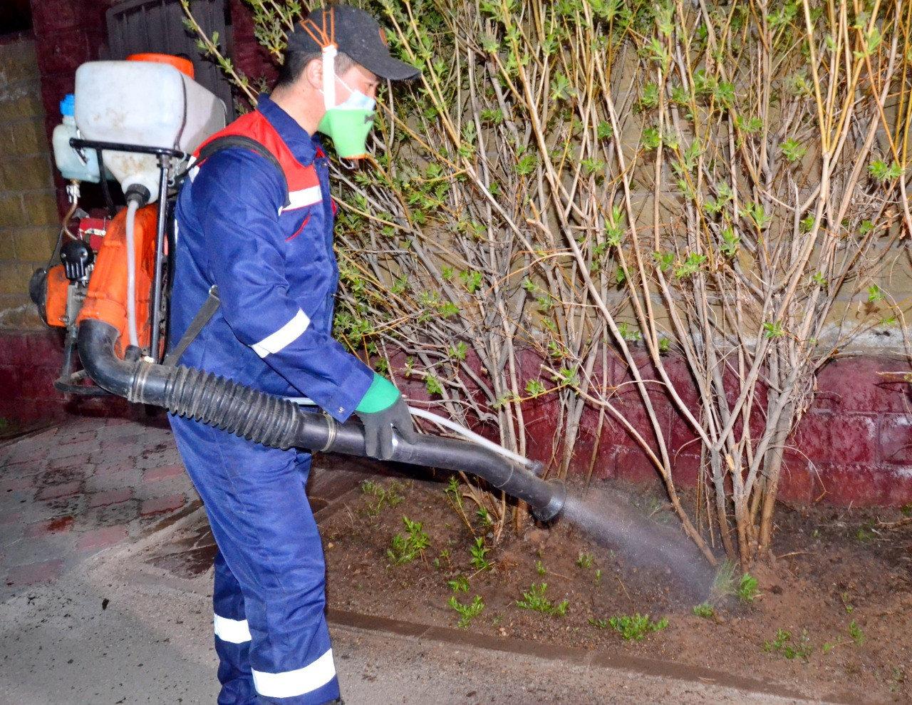 Дезинсекционные работы против комаров продолжаются в Нур-Султане, фото-3