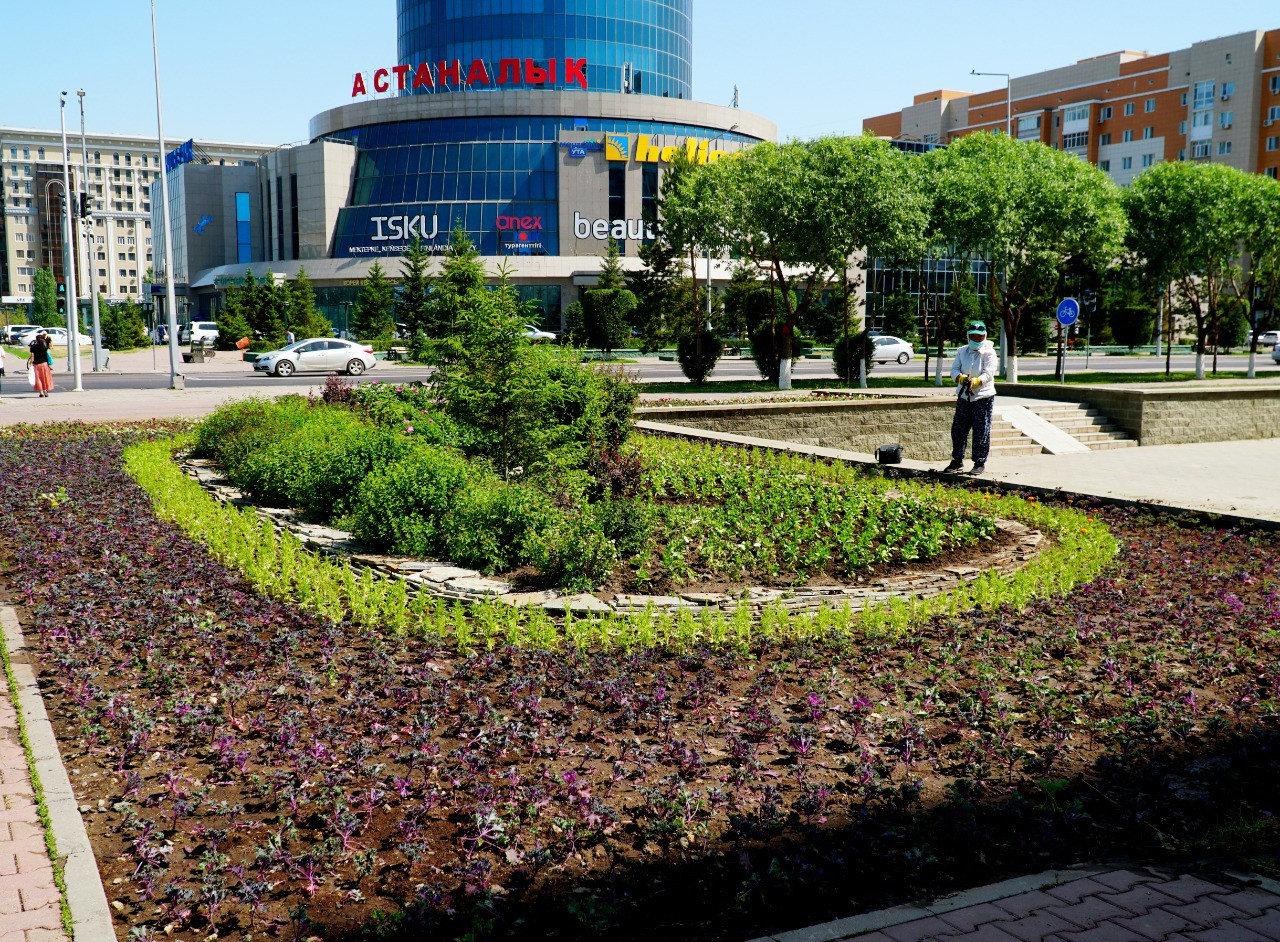 До 6 млн цветов высадят во всех районах Нур-Султана. Видео, фото-2