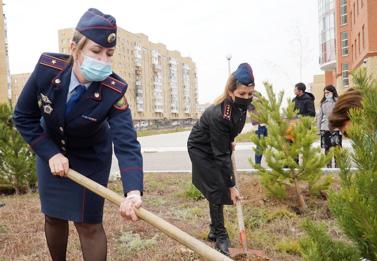 Деревья высадили ко Дню учителя в Нур-Султане, фото-2